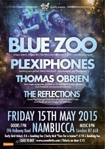 Nambucca-Blue Zoo - Plexiphones copy